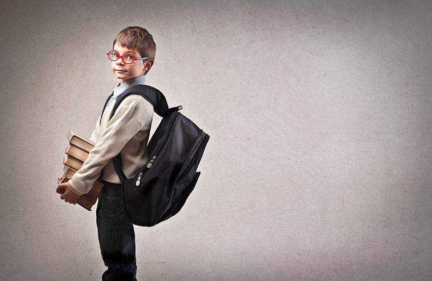 O que é preciso estudar para o INSS
